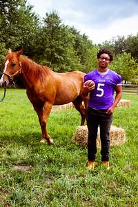Senior Stallions (16 of 346)