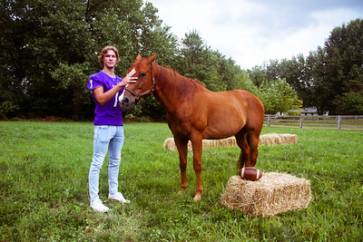 Senior Stallions (3 of 346)