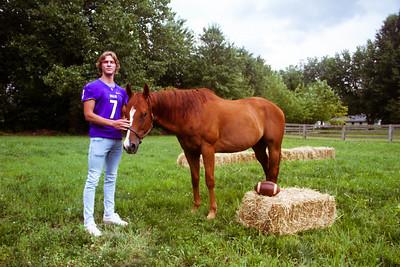 Senior Stallions (4 of 346)