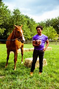Senior Stallions (20 of 346)