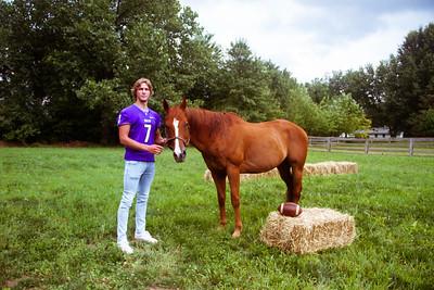 Senior Stallions (5 of 346)