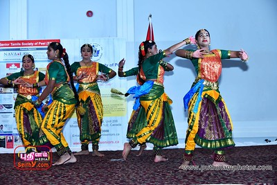 Senior Tamils Society Of Peel -  Christmas Gala- Dec 10, 2017   (18)