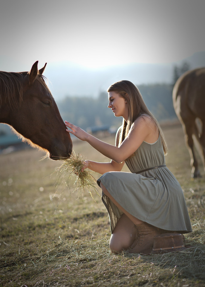 tender shot with the horse