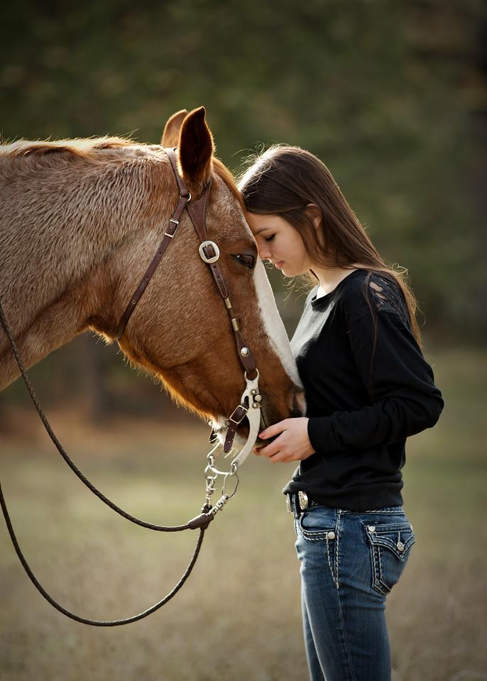 Horse wisper