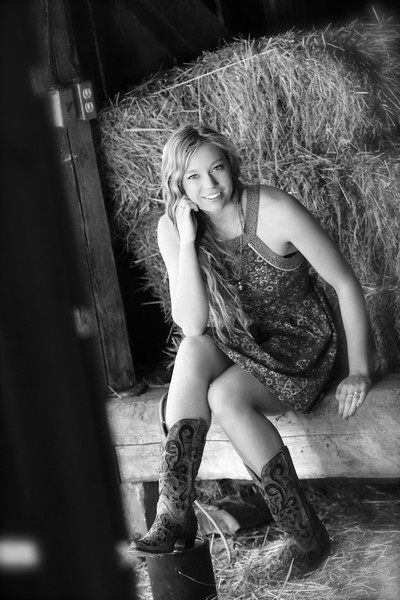 Sitting in the old barn - Version 2
