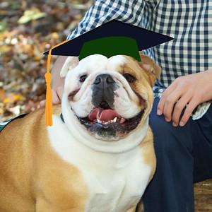 Dave the graduate