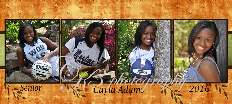 Cayla 2010