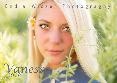 2018 Vanessa from Blackhawk with Endia Wisser Photography