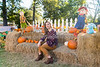 2017PumpkinPatch-025