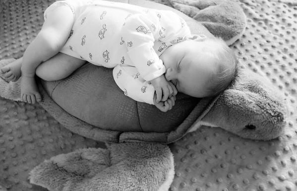 Baby River Dempsy