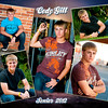 codycollage copy