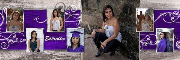 10x30 collage_Estrella1