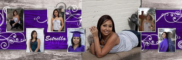 10x30 collage_Estrella2b
