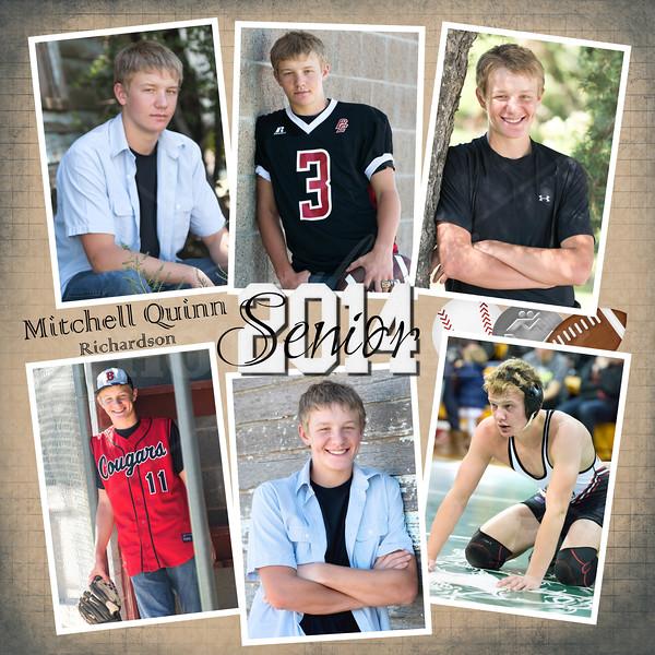 1212-Mitchell2014