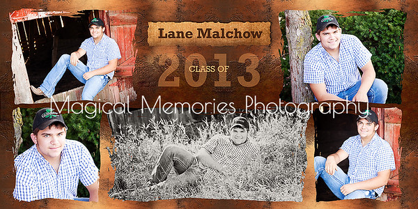 Lane 10x20 copy