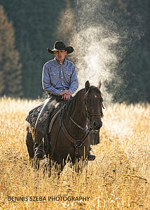 Montana Cowboy and horse throwing off steam on a chilly morning. 2018