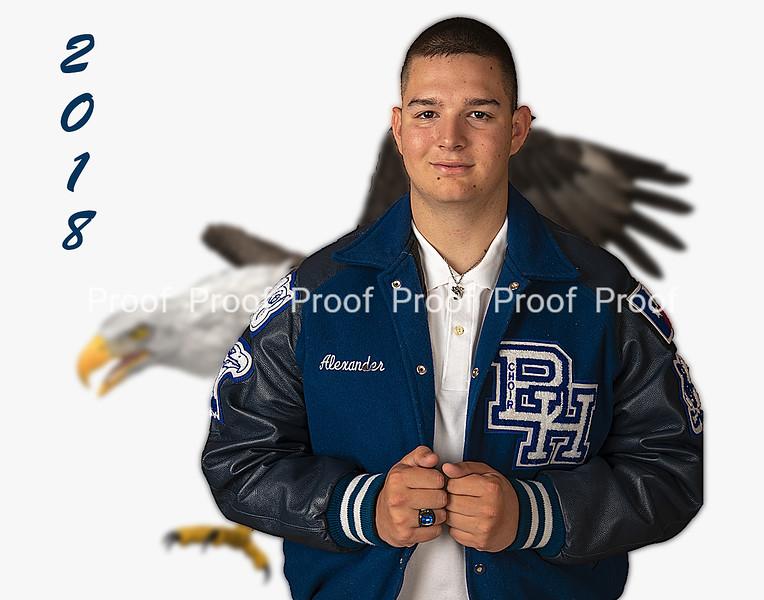 eagle background-111