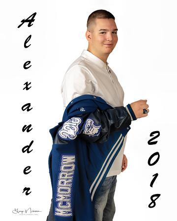 Alex coat wbg-wm