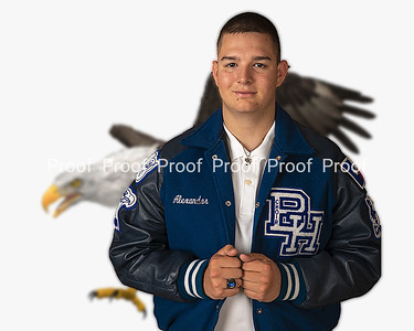 eagle background-1