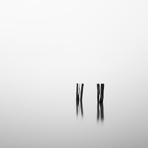 Old Pilings
