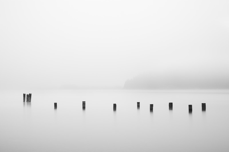 Pilings in the Fog