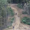 Logging cut