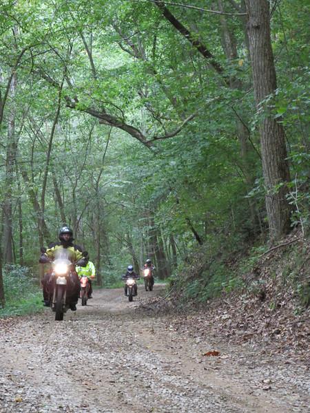 Motorcycles in woods