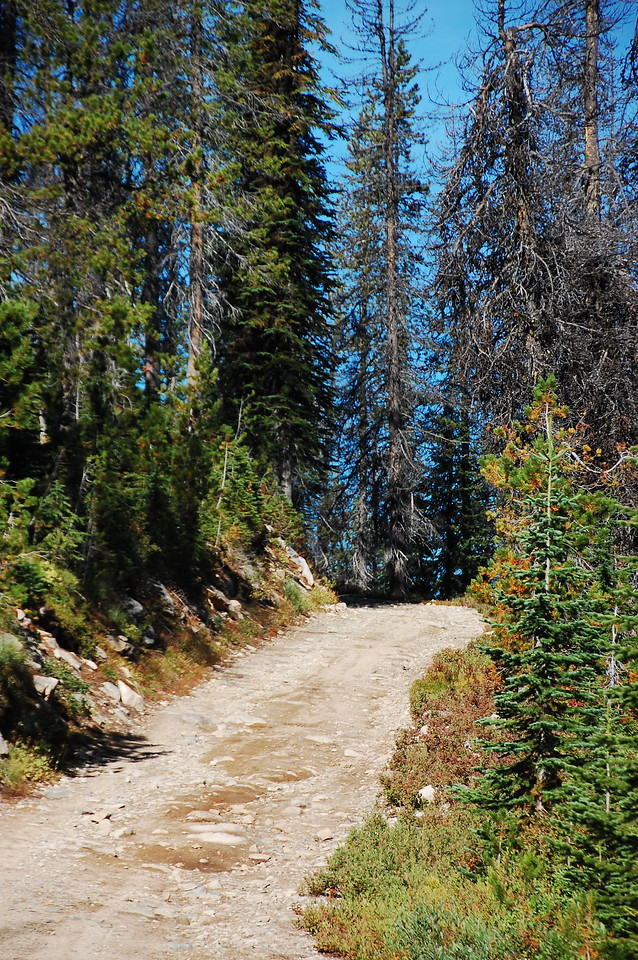 Another pretty typical trail section.  Nothing hard.  I never even engaged 4WD for the entire length of the trail.  A car could do it but for the ground clearance required every so often.