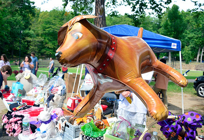 9/3/2016 Mike Orazzi | Staff An inflatable dog at the 2nd annual Bow Wow Bark in the park held in Bristol's Rockwell park on Saturday.