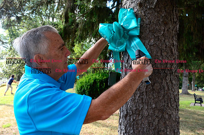 8/28/2014 Mike Orazzi | Staff Tony Lodovico places a teal ribbon on the Federal Hill Green in Bristol Thursday morning.