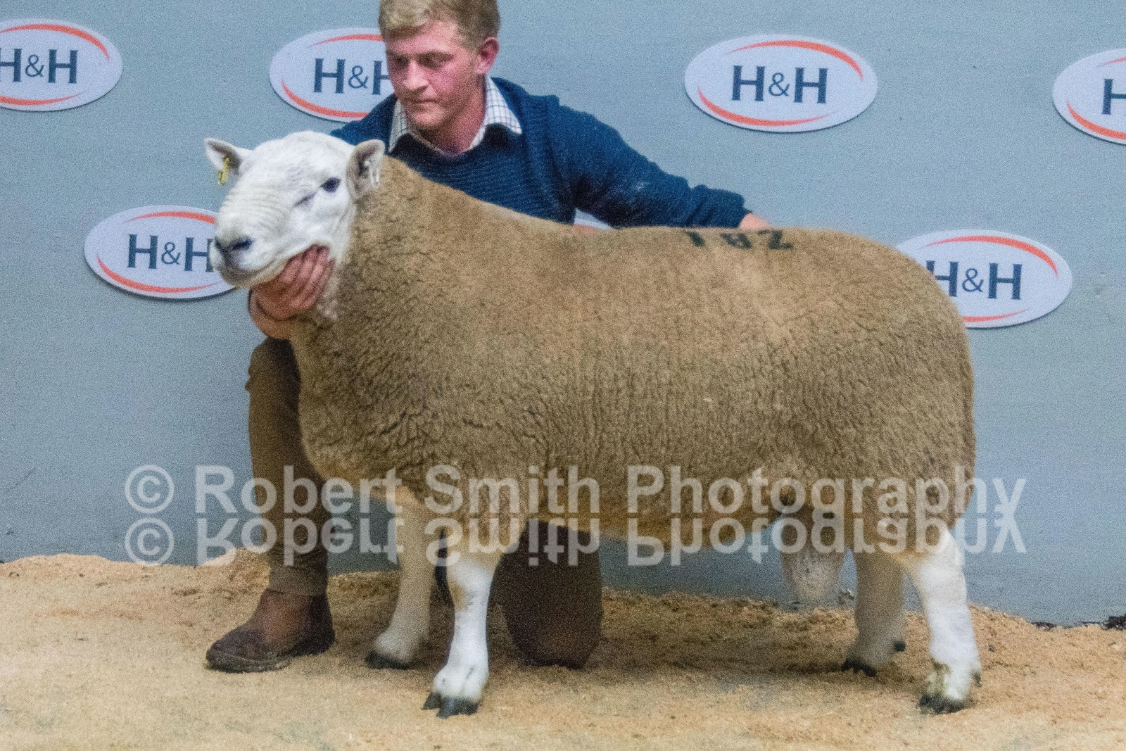 Lot 182 - 2 Shear from Esk sold for £9000