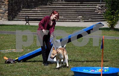 9/2/2017 Mike Orazzi | Staff Samantha Newel with Dixie during the third annual Bow Wow Bark in the Park Saturday at Rockwell Park to raise awareness and donations for pit bulls and shelter animals.