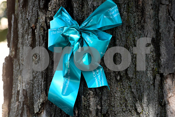 9/7/2017 Mike Orazzi | Staff Teal ribbons on Federal Hill.