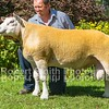 Lot 156 sold for 4500 gns
