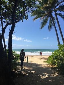 Doe - Mission Beach.