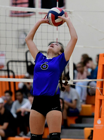 9/13/2018 Mike Orazzi | Staff Coginchaug's Lyndsey Taylor (6) during Thursday's match at Terryville High School.