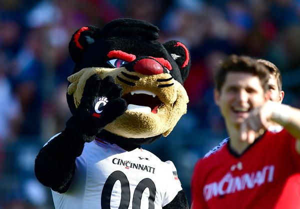 9/29/2018 Mike Orazzi   Staff The Cincinnati Bearcat at UConn Saturday.