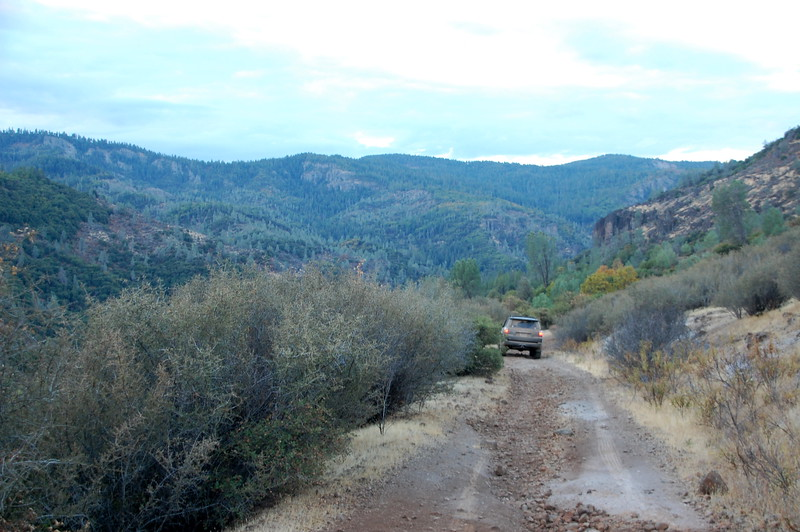 Typical view of the 60+ miles of Ponderosa Way, Mineral to Chico.