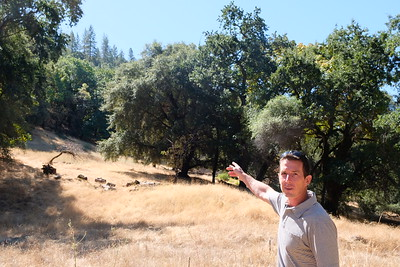 Don Hankins, a professor of geography and planning at Chico State specializing in fire ecology, shows off oaks, maples and ponderosa pines on Tuesday at Big Chico Creek Ecological Preserve. (Camille von Kaenel -- Enterprise-Record)