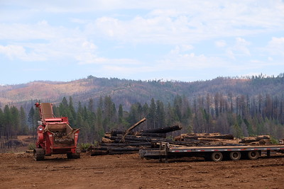 A log storage and processing site on Lakeridge Circle in Magalia received a permit from Butte County to continue operations on Wednesday. (Camille von Kaenel -- Enterprise-Record)