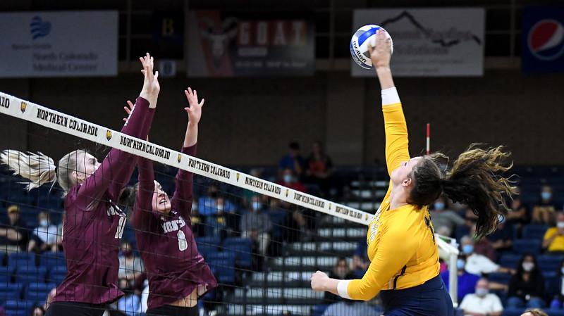 Montana Northern Colorado Volleyball