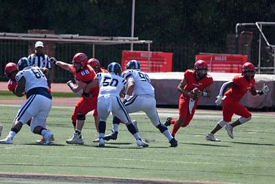 Wildcat sophomore QB Elijah Burrell drops back in the pocket.