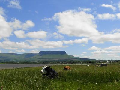 Chill in Sligo