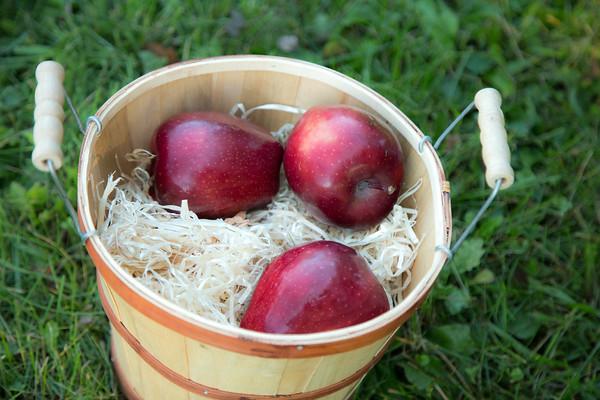 Apples 11