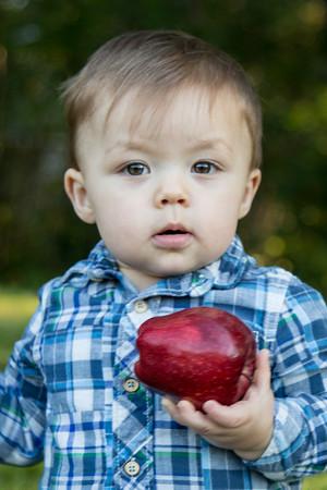 Apples 10