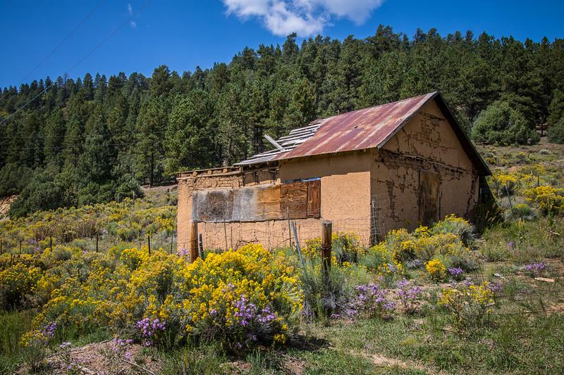 Old Hut Near Angel Fire