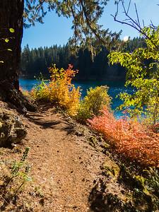 Fall Splendor /  Clear Lake