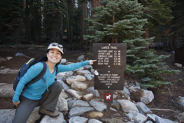 Alta Peak 2015