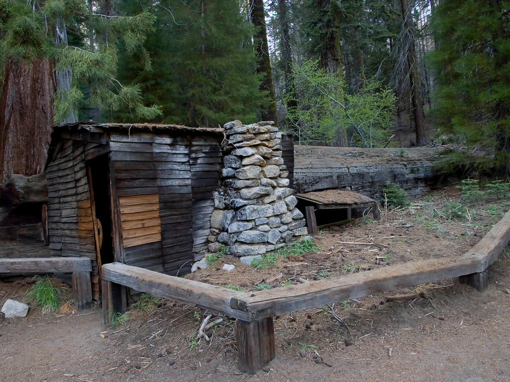 """""""Tharp's Log"""".  A fallen Sequoia made into a home by Hale Tharp."""