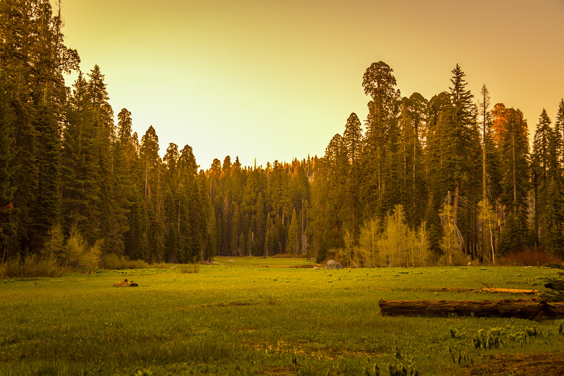 Sunset at Crescent Meadow
